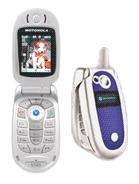 Motorola V303 Triplets