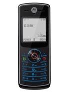 Motorola W160 / W156