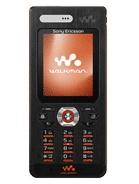 Sony Ericsson W888 DB2020 A1